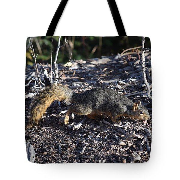 Squirrel Pprh Woodland Park Co Tote Bag