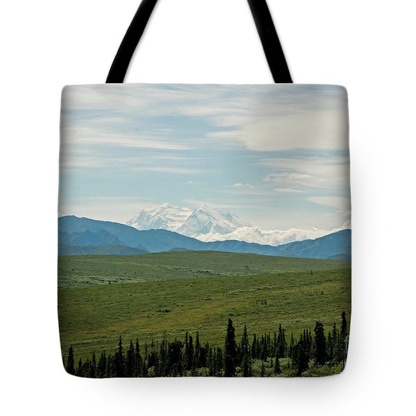 Foreground And Mountain Tote Bag