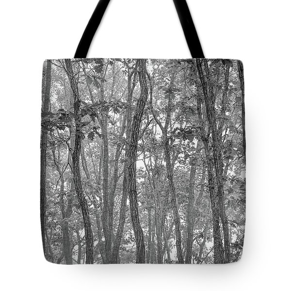 Forest #090 Tote Bag