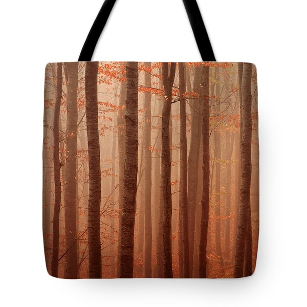Forest Barcode Tote Bag by Evgeni Dinev