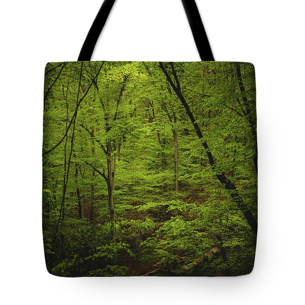 Tote Bag featuring the photograph Forest Beckons by Shane Holsclaw