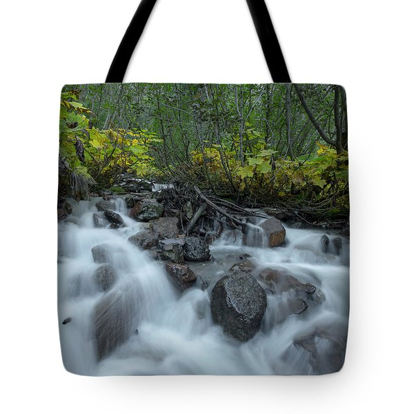Forest Cascades Tote Bag