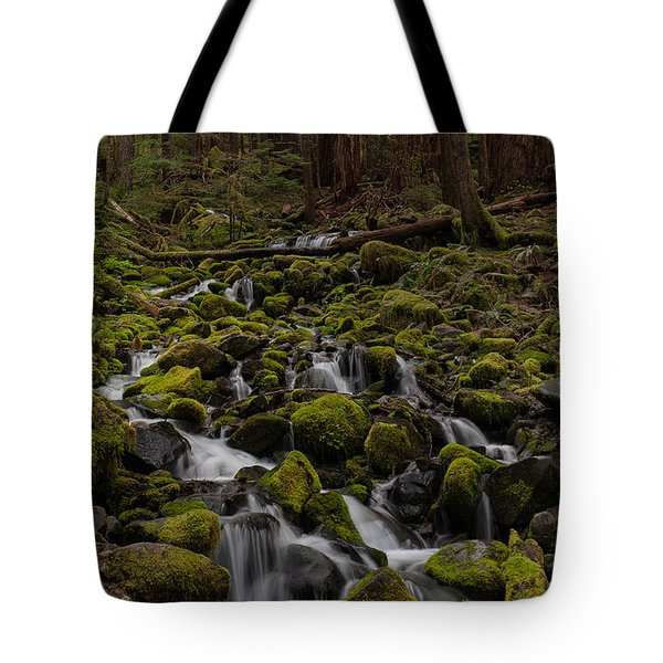 Forest Cathederal Tote Bag by Mike Reid