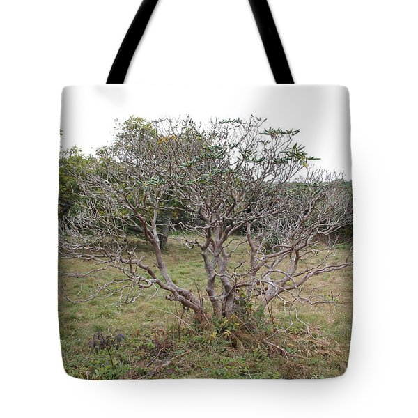 Forest Character Tree Tote Bag