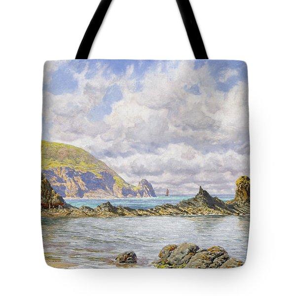 Forest Cove Tote Bag by John Brett