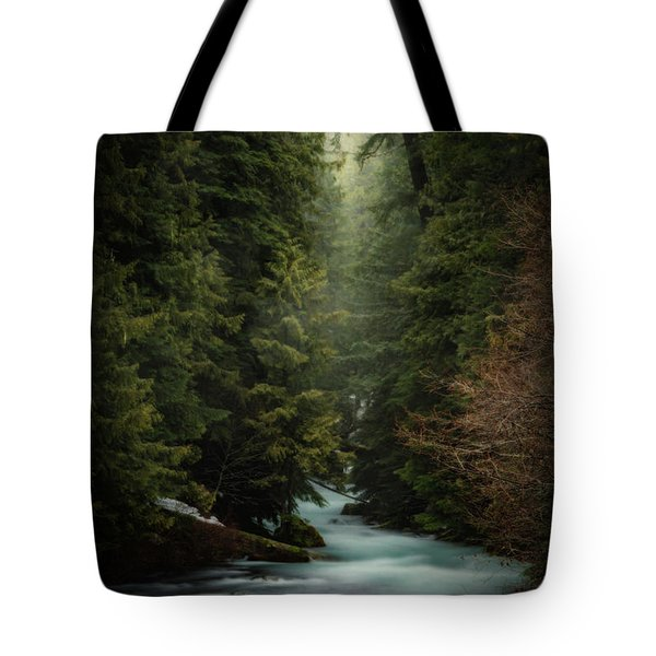Tote Bag featuring the photograph Forest Enchantment by Cat Connor