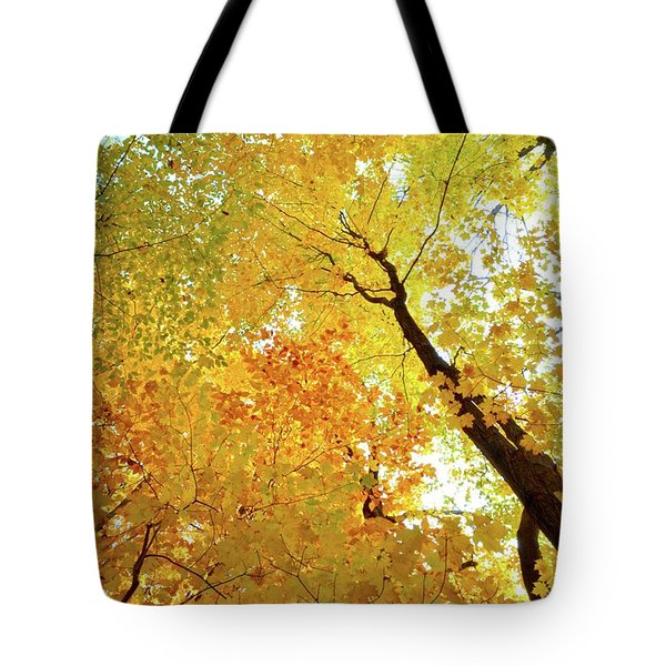 Forest Fall Yellow  Tote Bag by Lyle Crump