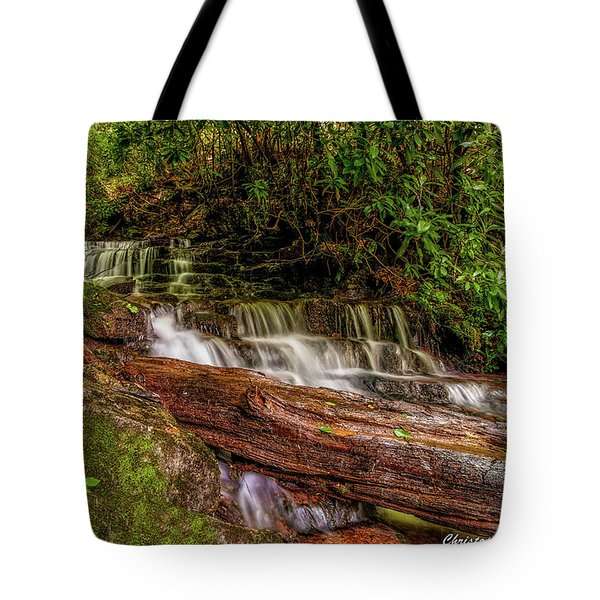 Tote Bag featuring the photograph Forest Falls by Christopher Holmes