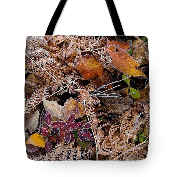 Forest Ferns Tote Bag