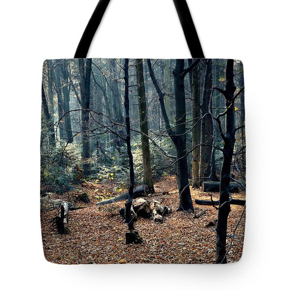 Fir Forest-1 Tote Bag