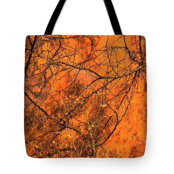 Tote Bag featuring the photograph Forest Fire by Benny Marty