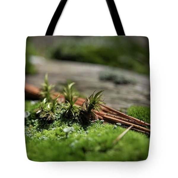 Forest Floor 2 Tote Bag