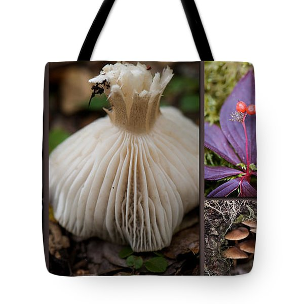 Forest Floor Tote Bag by Lisa Knechtel