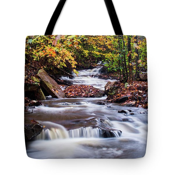 Tote Bag featuring the photograph Forest Gem by Parker Cunningham