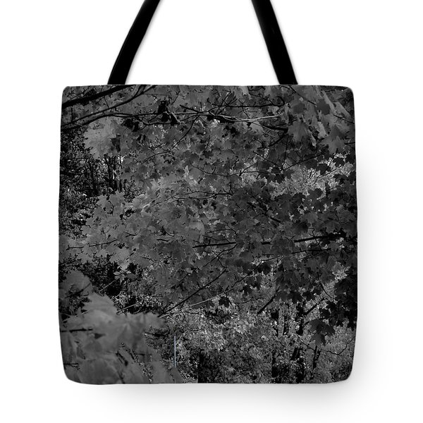 Forest Hut Tote Bag