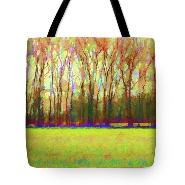 Forest In Autumn Light Tote Bag