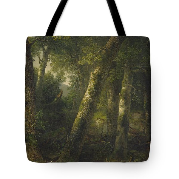 Forest In The Morning Light Tote Bag