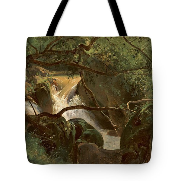 Forest Interior With A Waterfall Papigno Tote Bag