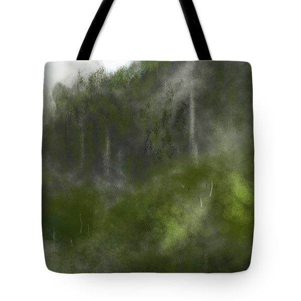 Forest Landscape 10-31-09 Tote Bag by David Lane