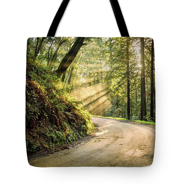 Tote Bag featuring the photograph Forest Light by Jason Roberts