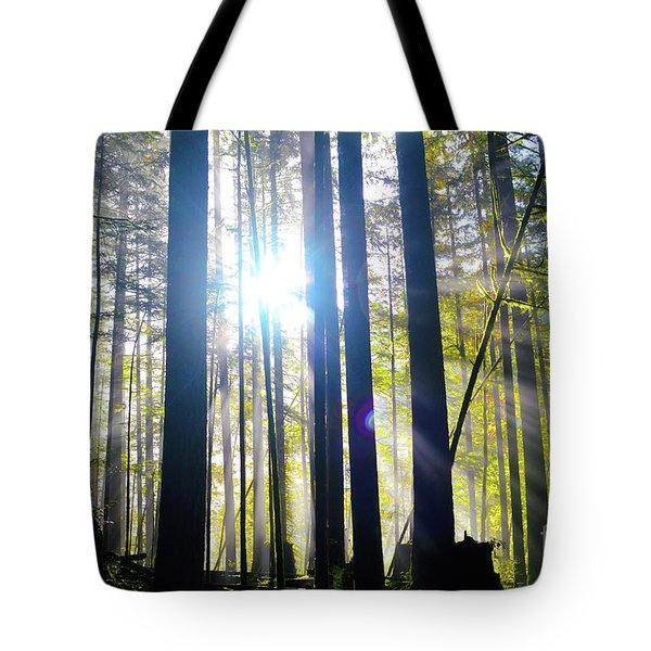 Forest Light Rays Tote Bag