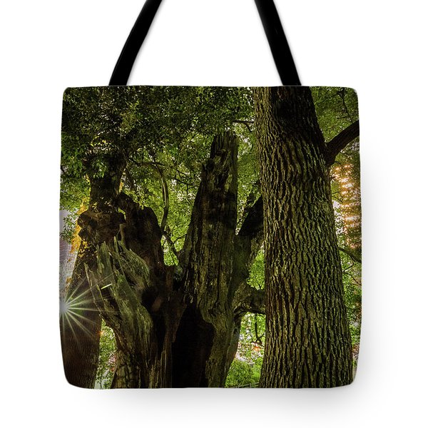 Tote Bag featuring the photograph Forest Of Tokyo by Tatsuya Atarashi