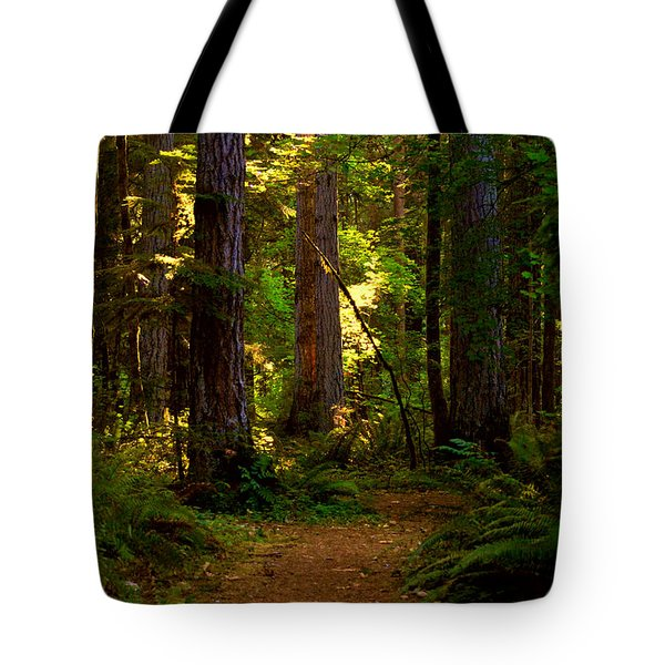 Forest Path Tote Bag by Lori Seaman