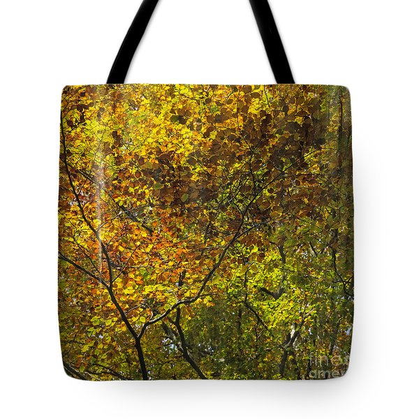 Forest Pattern Tote Bag by Yuri Santin