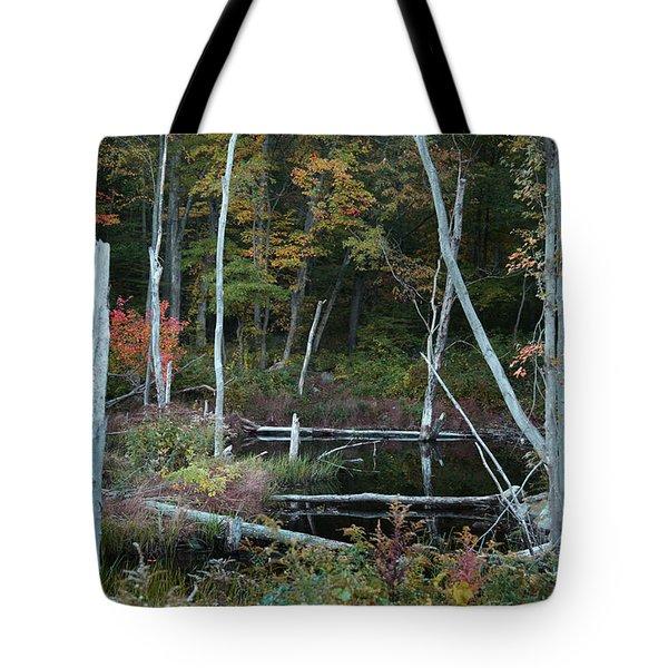 Forest Pond Tote Bag