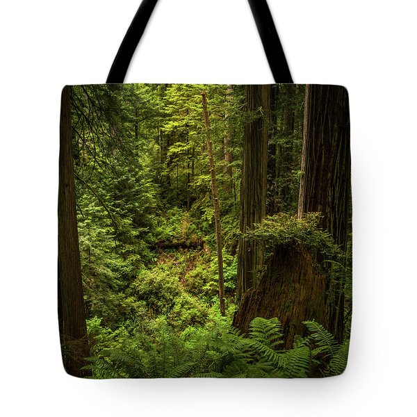 Forest Primeval Tote Bag