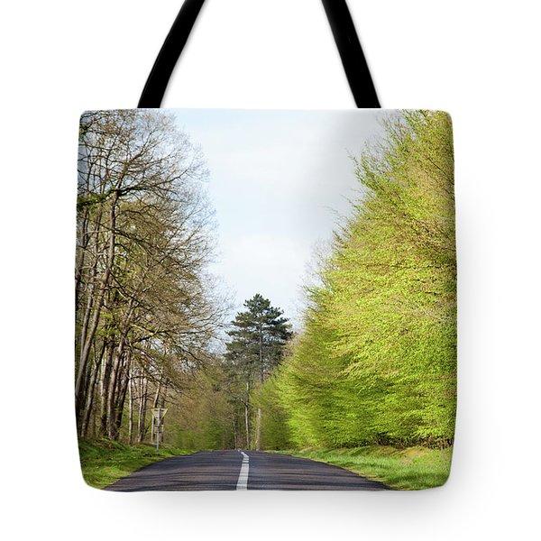 Forest Road Tote Bag by Yoel Koskas