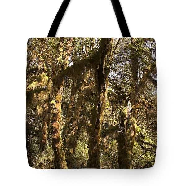 Forest Setting In Hoh Rain Forest Tote Bag