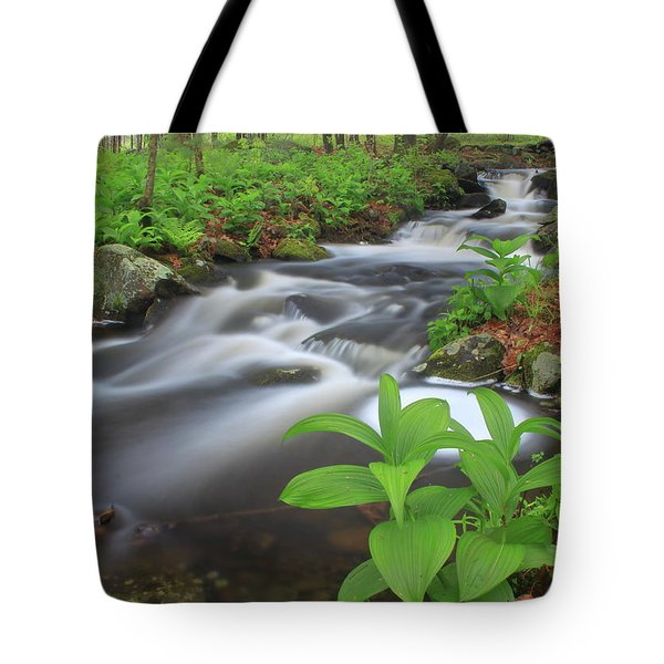 Forest Stream And False Hellabore In Spring Tote Bag by John Burk