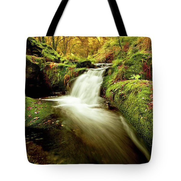 Forest Stream Tote Bag by Jorge Maia
