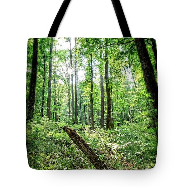 Tote Bag featuring the photograph Forest Sun by Alan Raasch