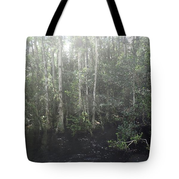 Forest, Sun Swamp Tote Bag