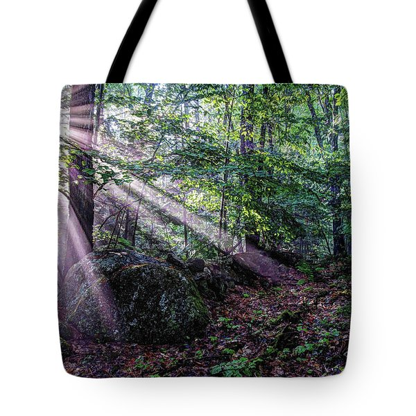 Tote Bag featuring the photograph Forest Sunbeams by Wayne Marshall Chase