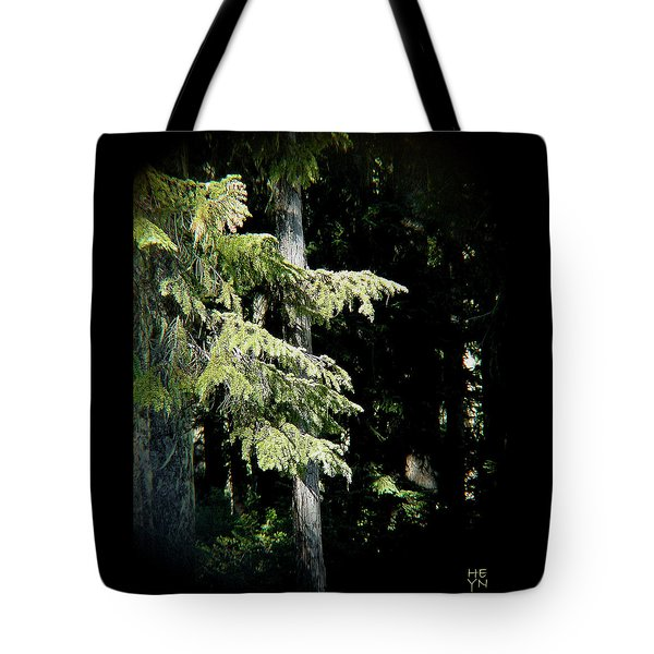 Forest Sunlight - 1 Tote Bag