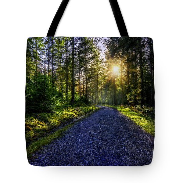 Tote Bag featuring the photograph Forest Sunlight by Ian Mitchell