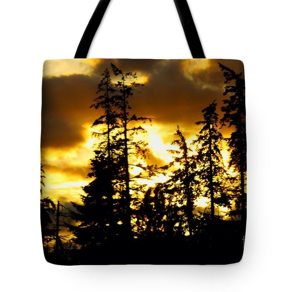 Tote Bag featuring the photograph Forest Sunset  by Nick Gustafson