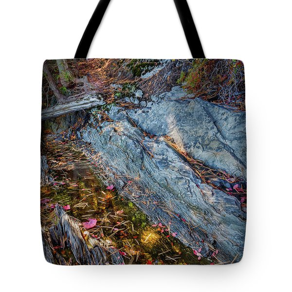 Forest Tidal Pool In Granite, Harpswell, Maine  -100436-100438 Tote Bag