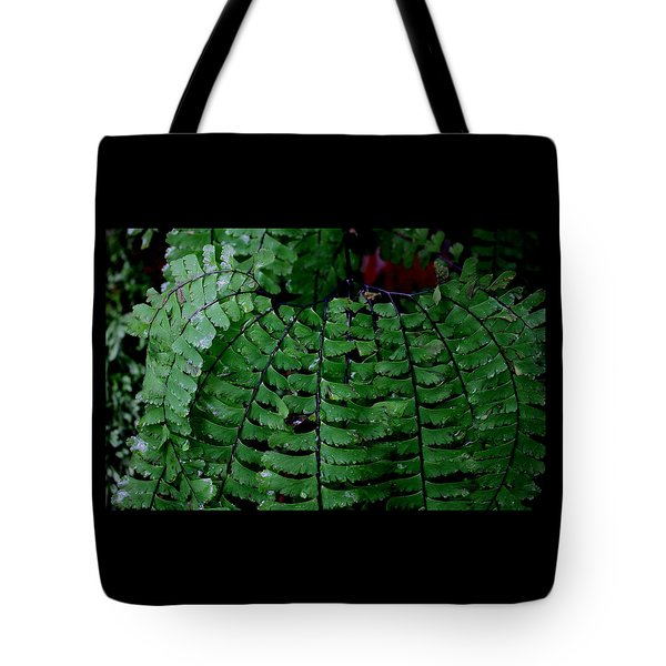Forest Treasures #1 Tote Bag
