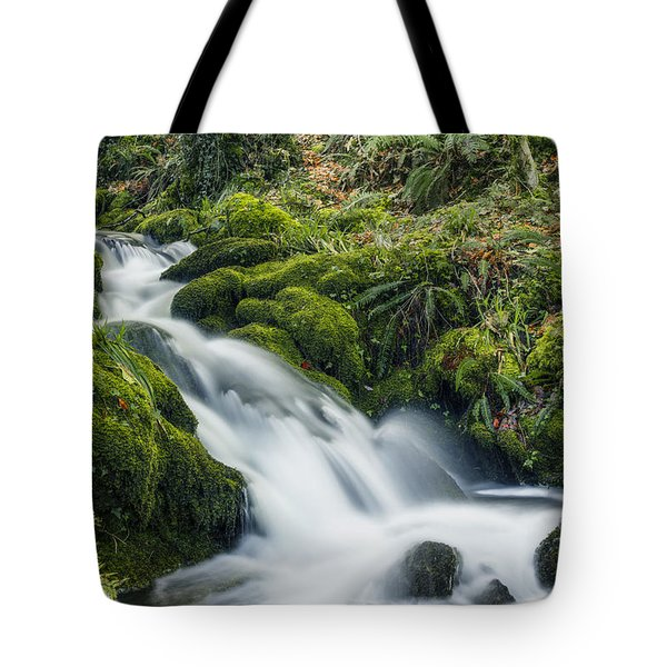 Forest Treasures  Tote Bag by Ian Mitchell