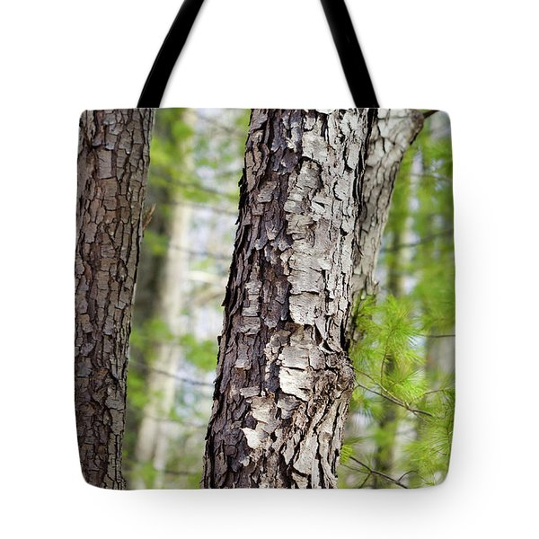 Tote Bag featuring the photograph Forest Trees by Christina Rollo