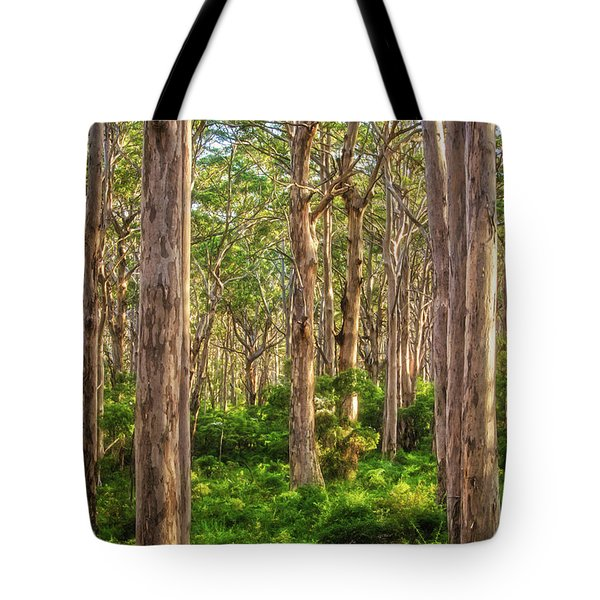 Tote Bag featuring the photograph Forest Twilight, Boranup Forest by Dave Catley