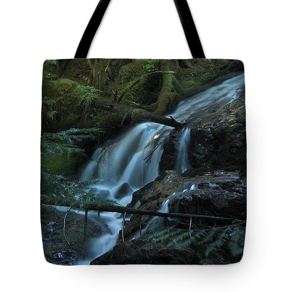 Forest Waterfall. Tote Bag