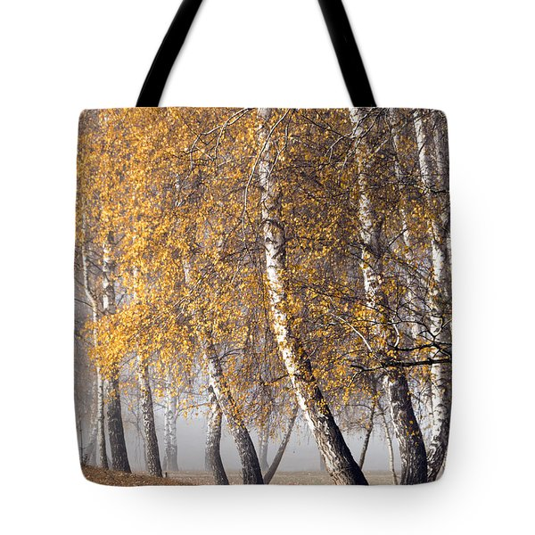 Forest With Birches In The Autumn Tote Bag by Odon Czintos