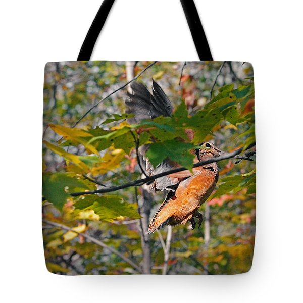 Forest's Timberdoodle Tote Bag