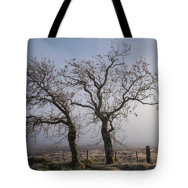 Tote Bag featuring the photograph Forever Buddies Facing The Fog by Jeremy Lavender Photography