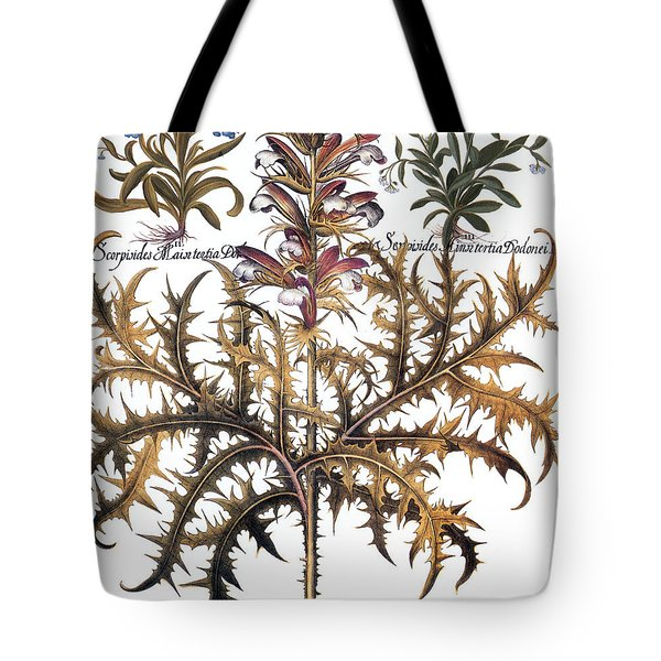 Forget-me-not & Acanthus Tote Bag by Granger